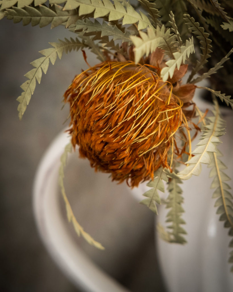 Banksia in white jug