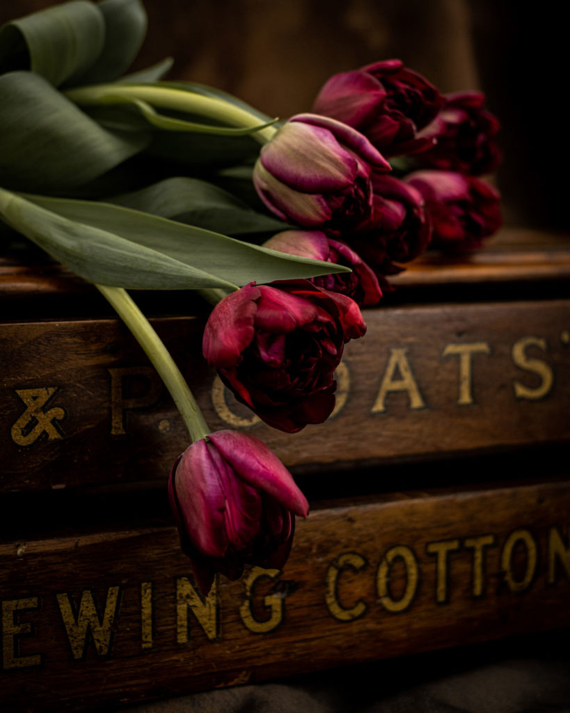 Tulips and sewing box